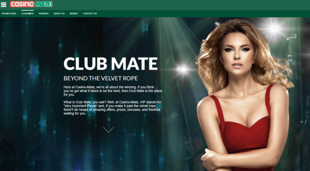 Casino Mate- VIP